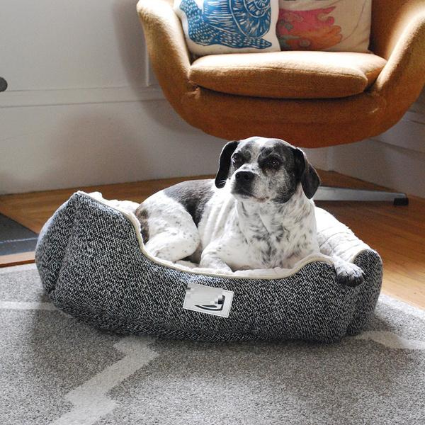 Choosing the best Pet Bed