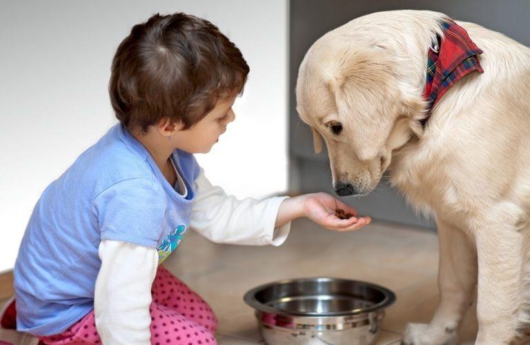 Teach Your Child about Proper Pet Care