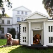Luxury Dog Houses