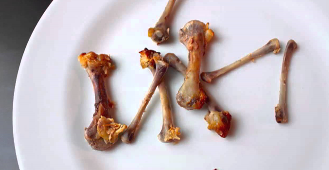Can Chicken Bones Kill Your Dog?