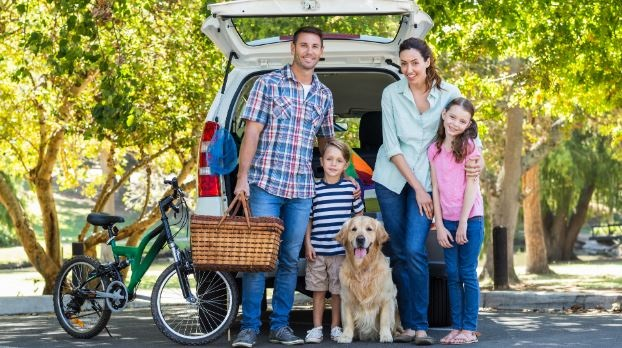 Pet Safety In An RV: Helpful Tips