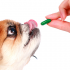 Guide To Know How Much Benadryl For Dog Is Enough