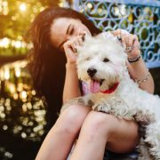 Modern Pet Ownership: The Best Apps to Help You Take Care of Your Pooch