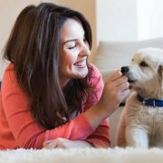 Check These Tips For Puppy Proofing Your Home