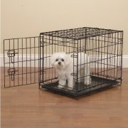 Quick Guide To Buying An Escape-Proof Dog Crate