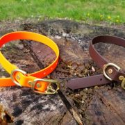 How Do You Know If A Dog Collar Is Genuine?