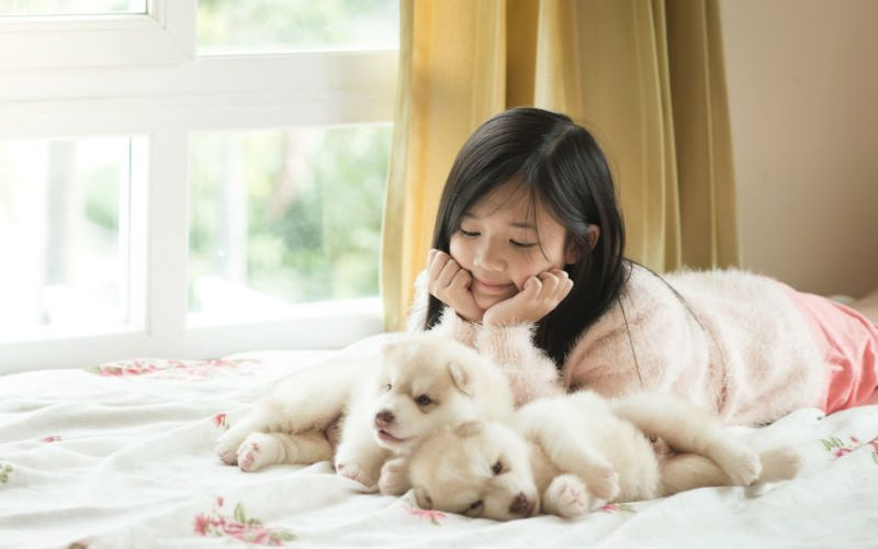 Tips for Choosing the Best First Puppy for Your Child